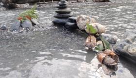 http://www.reina.ch/wp-content/uploads/2012/07/P8040207.jpg